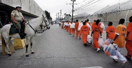 Large_prisoners